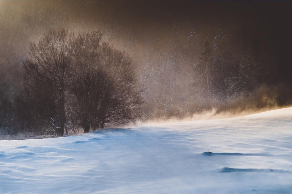 fot. Maciej Kwarciany